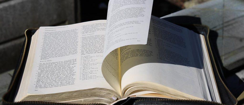Bibel i vind