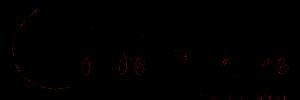 Tønder Freikirke Logo